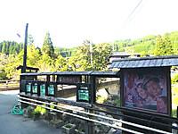 Tanoharu002